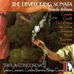 The developing sonata